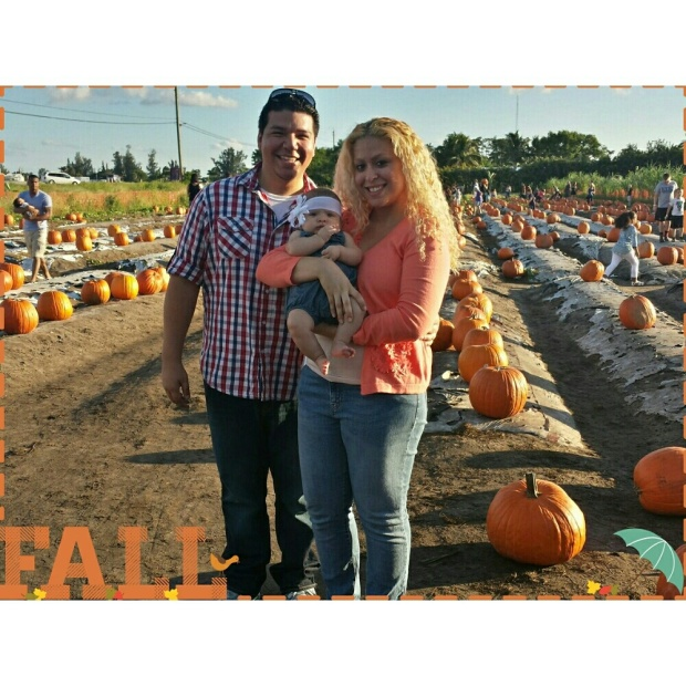 Pumpkin Patch 2014.jpg